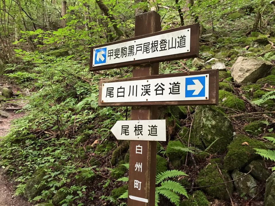 ojirokeikoku07