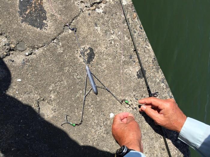 片貝漁港釣り4
