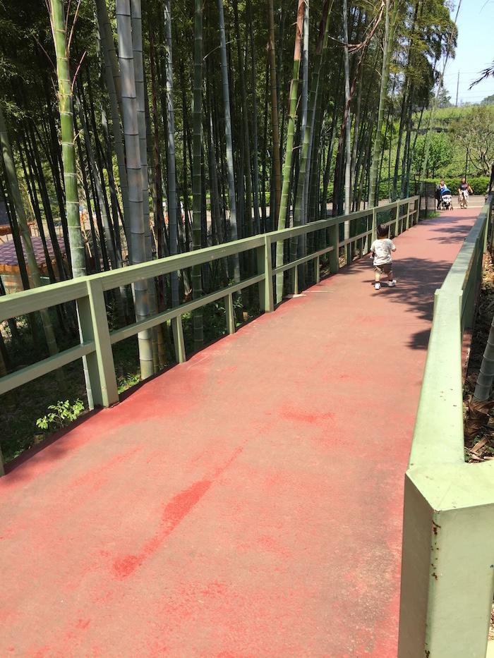 市川動植物園11