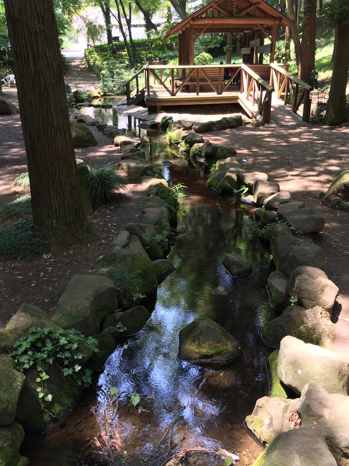 市川動植物園23