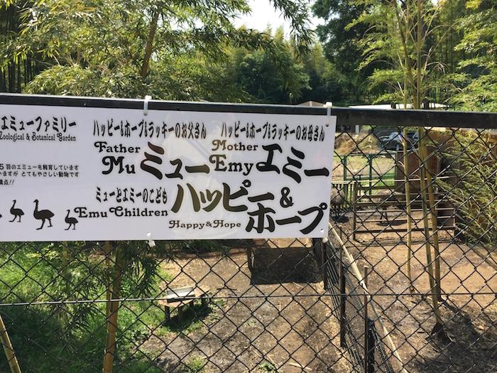 市川動植物園12
