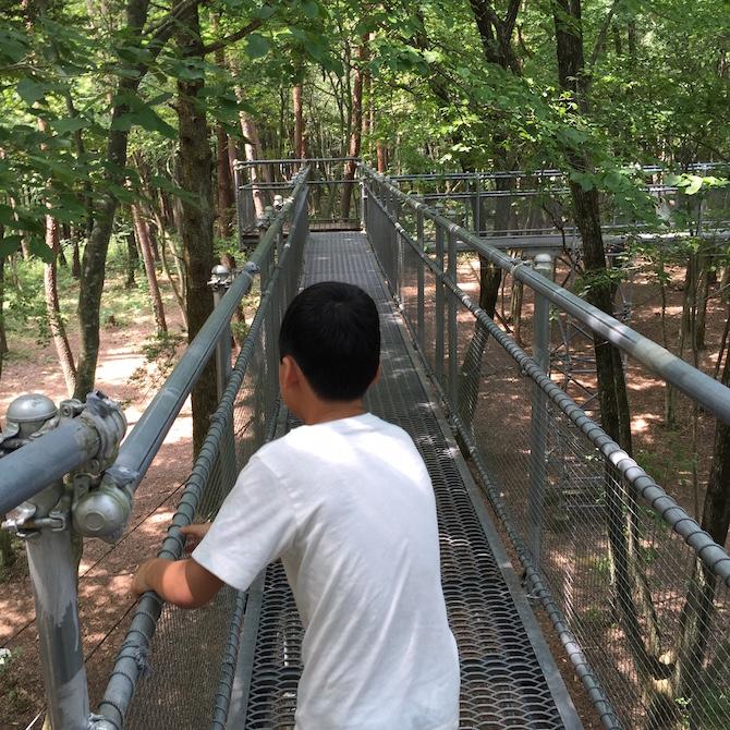 白州・尾白の森名水公園「べるが」12