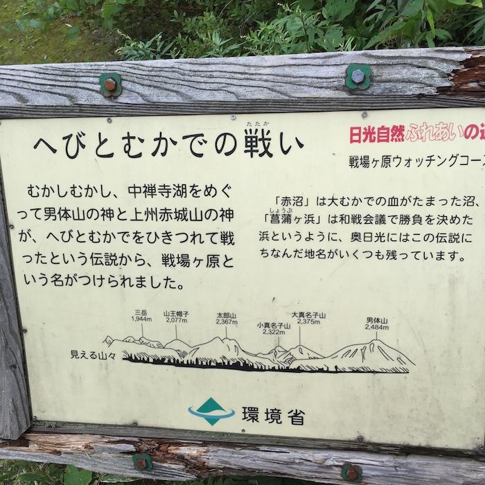 戦場ヶ原ハイキングコース7